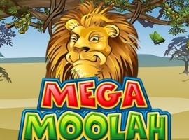 Mega Moolah kostenlos online spielen - das Spiel macht Millionäre!